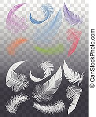 White feathers, set of vector graphic design