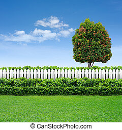 white fence and hedge with tree on blue sky