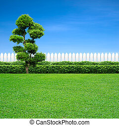 white fence and tree