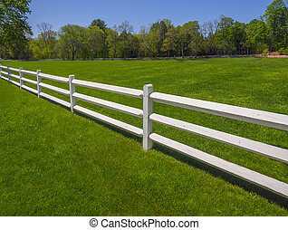 White fence on green grass