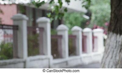 White fence - From behind the trees of Rasfokus white fence