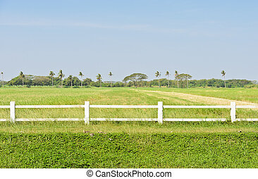 White fence with green field