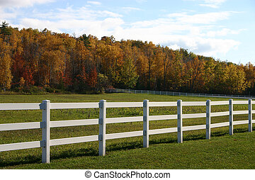 White Fence with Trees in  background