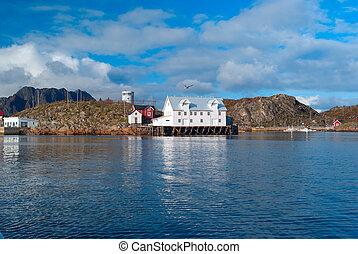 White fish factory on the Lofoten island
