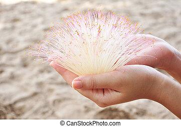 white flower on hand