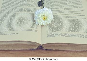 White flower on old book vintage