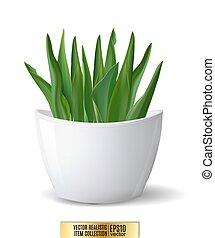 White flowerpot whith green plant on white background. Realistic vector, 3d illustration