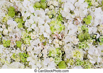 white flowers background texture.