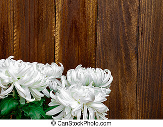 White flowers on brown wooden background