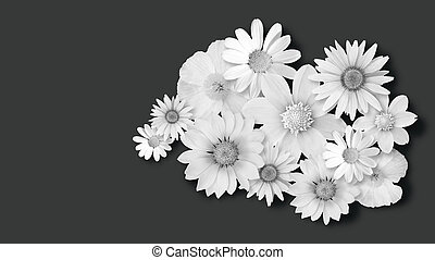white flowers on dark background