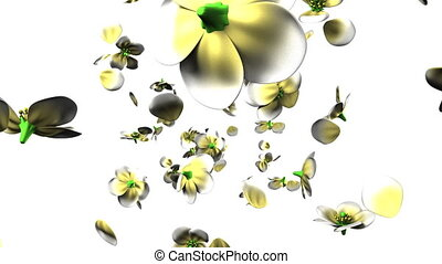 White flowers on white background. 3D render animation.