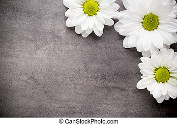 White flowers on the spa background.