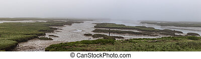 White foggy delta panorama at low tide
