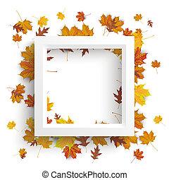 White Frame Autumn Foliage