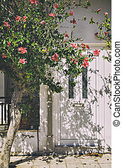 White front door in Greece - Image of a white front door....