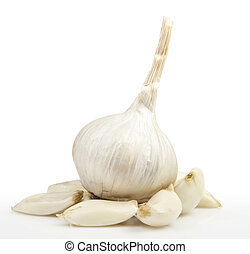 White garlic on a white background for your design