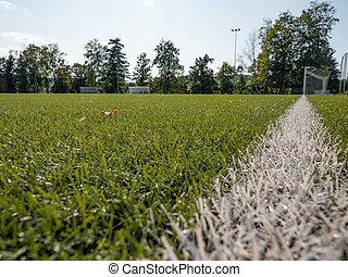 White gate line.  Soccer training court line