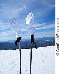White gloves - White mountain-skier gloves. Sheregesh....