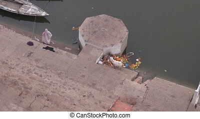 white goat eating ceremony flowers on Ganges river...