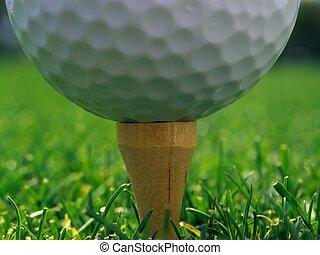White golf ball on a grass.