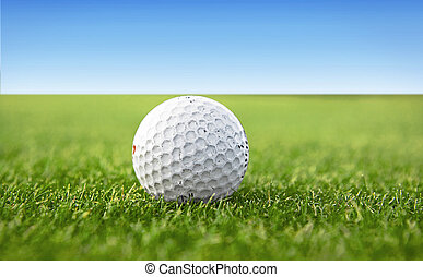 white golf ball on a green golf course - a white golf ball...