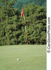 white golf ball on a green