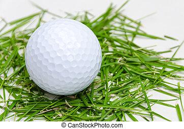 white golf ball on freash grass