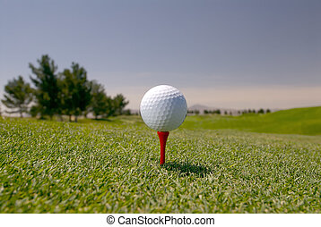 White Golf Ball on Tee