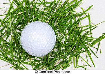 white golf ball top view on grass