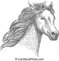 White graceful horse sketch portrait. Wild mustang with mane...
