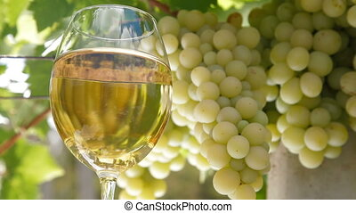 White Grape and Wine Glass