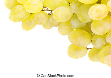 White grapes isolated on white back