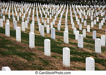Arlington National Cemetery - White gravestones in a row on...