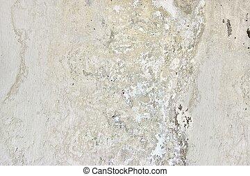 White Grunge Plaster Wall