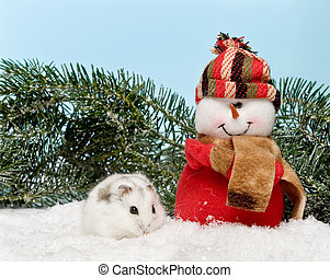 White hamster in the snow