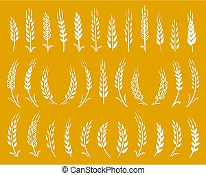 white hand drawn wheat ears icons set