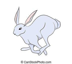 white hare vector