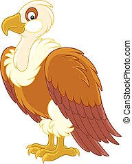 White-headed vulture - Vector illustration of a large...
