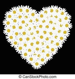 White heart shaped daisy flower