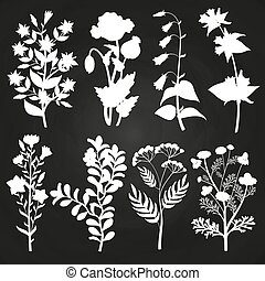 White herbal and floral silhouettes on chalkboard