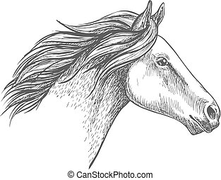 White horse pencil sketch portrait. Running mustang with...