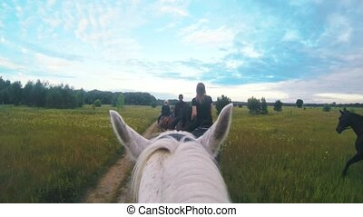 White horse rides on the field following the women on...