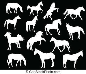 White horses silhouette