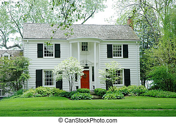 White House - White formal house with siding, black shutters...
