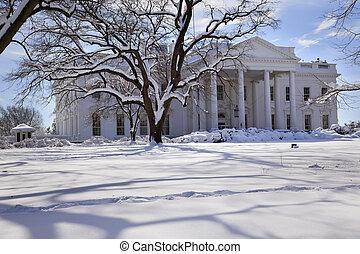 White House Trees After Snow Pennsylvania Ave Washington DC