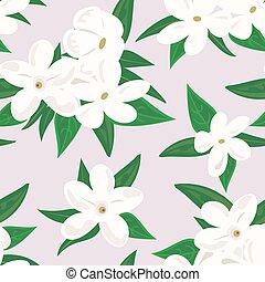White jasmine flower. branch of jasmine flowers isolated on...