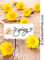 White Label, Dandelion, Calligraphy Spring, Wooden Background