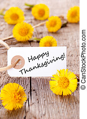 Label with Happy Thanksgiving