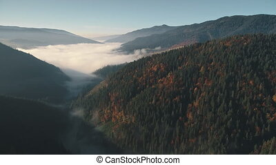 white large mist cloud surrounded by green forestry hills -...