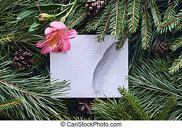 White leaf with a bird's feather for text on a Christmas background
